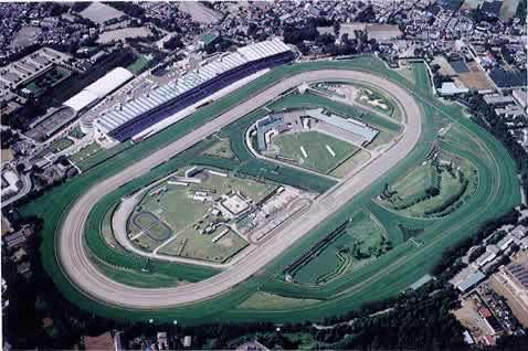 Vue aérienne de l'hippodrome de Nakayama - Lien vers plus d'infos sur le Nakayama Grand Jump
