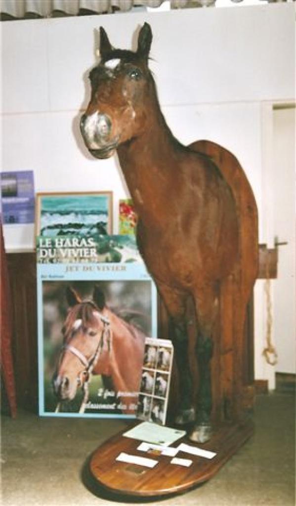 jet-du-vivier-celebre-cheval-jpg.jpg